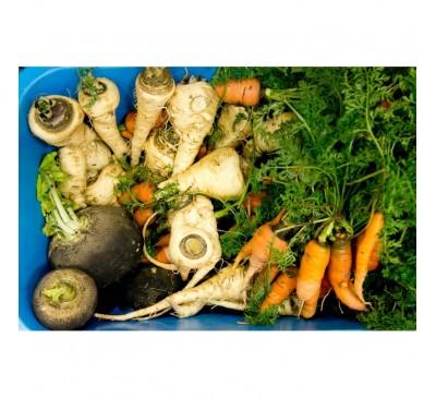 Mix din legume bio-congelat/p.160gr