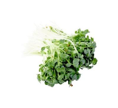 Seminte Broccoli Raab 100gr
